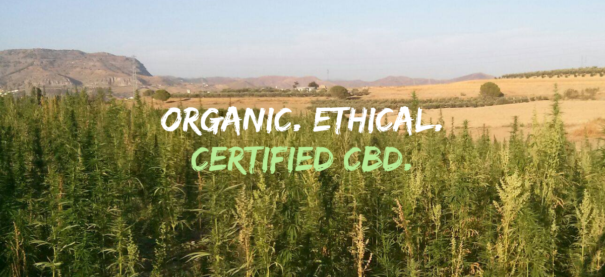 The CBD Place Supplier Page